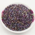 Beads, Seed beads, Glass, Assorted colours, Cylindrical, 2mm x 2mm, 25g, 1700 Beads, (SSG046)
